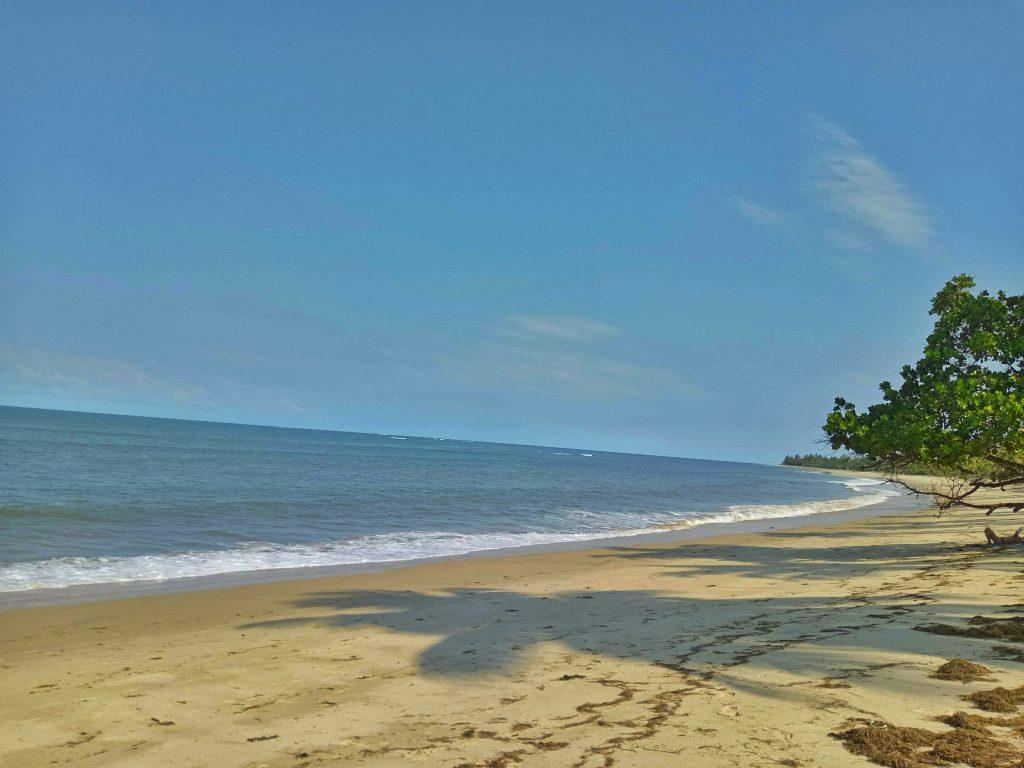 A photo of Ushongo Beach by weonboard.com
