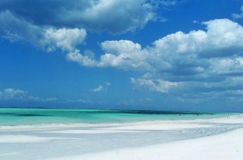 A photo of Beach in Zanzibar by weonboard.com